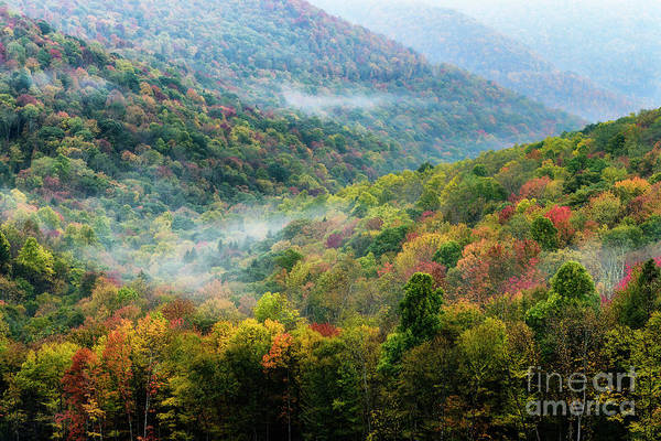 Photograph - Autumn Hillsides With Mist by Thomas R Fletcher