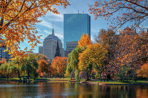 Photograph - Autumn In Boston's Public Garden by Kristen Wilkinson