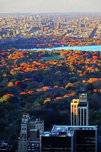 Photograph - Autumn In Central Park New York Ny Fall Foliage Buildings by Toby McGuire