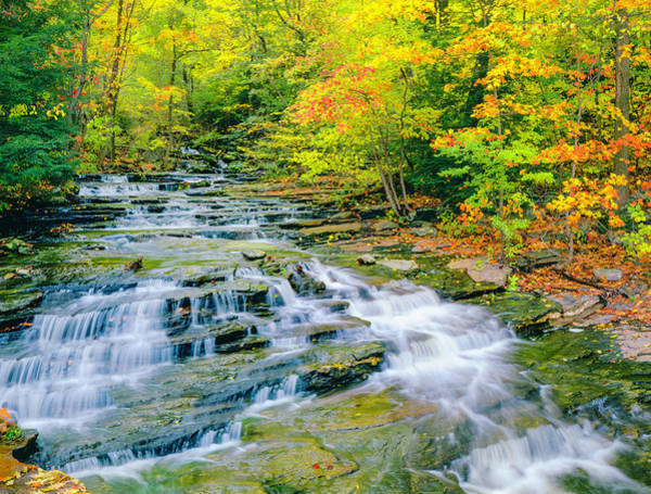 New England Autumn Photograph - Autumn In Connecticut by Ron thomas