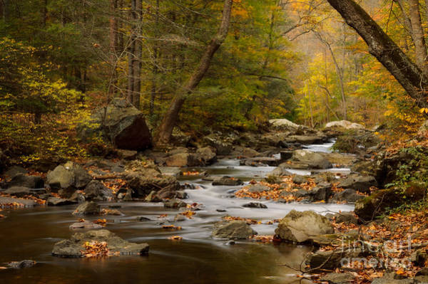 Photograph - Autumn In Ken Lockwood Gorge by Debra Fedchin
