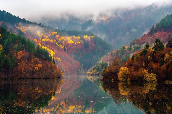 Photograph - Autumn Lake by Evgeni Dinev