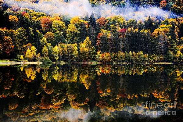 Vibrant Color Wall Art - Photograph - Autumn Landscape In The Mountains - St by Aaltair