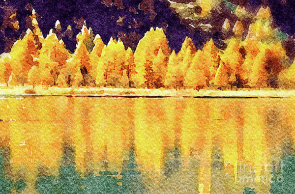 Wall Art - Photograph - Autumn Larch by DiFigiano Photography