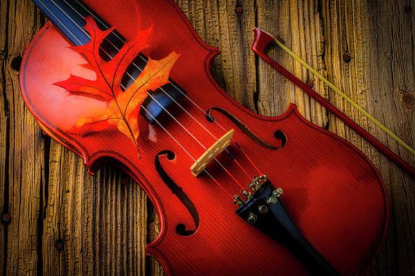 Wall Art - Photograph - Autumn Leaf On Violin by Garry Gay