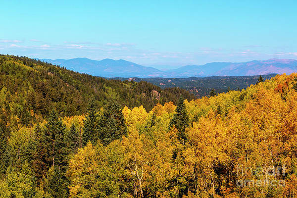 Photograph - Autumn Leaves And The Sangre De Cristo by Steve Krull