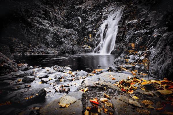 Autumn Leaves At Glenoe Art Print