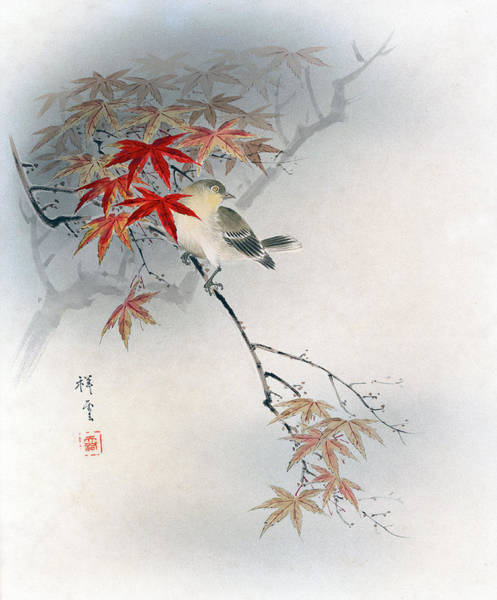Painting - Autumn Leaves by Shoen