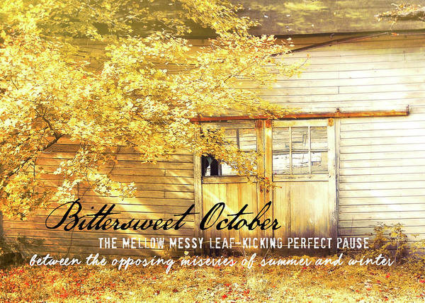 Photograph - Autumn Light Quote by JAMART Photography