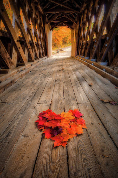 Photograph - Autumn Love by Robert Clifford