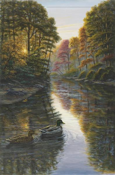 Trumpeter Swan Painting - Autumn Mallards II by Bruce Dumas