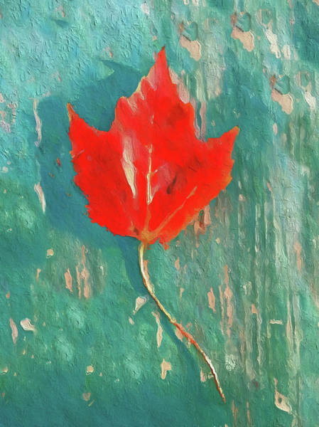 Wall Art - Painting - Autumn Maple by Dan Sproul