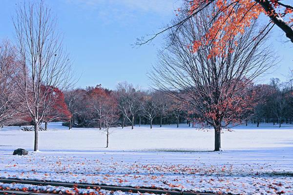 Photograph - Autumn Meets Winter by Kim Hojnacki