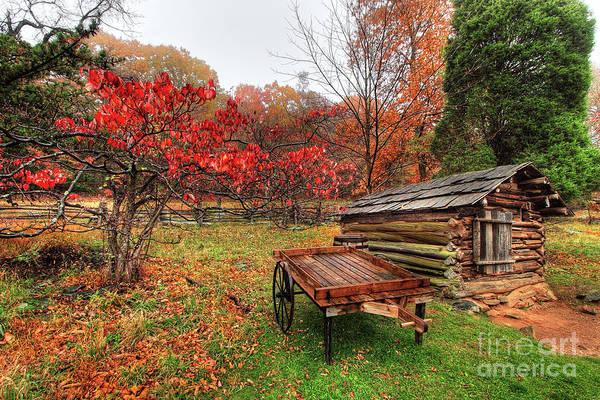 Wall Art - Photograph - Autumn Memories by Dan Carmichael