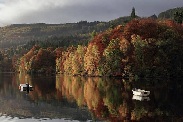 Photograph - Autumn Morning by Grant Glendinning