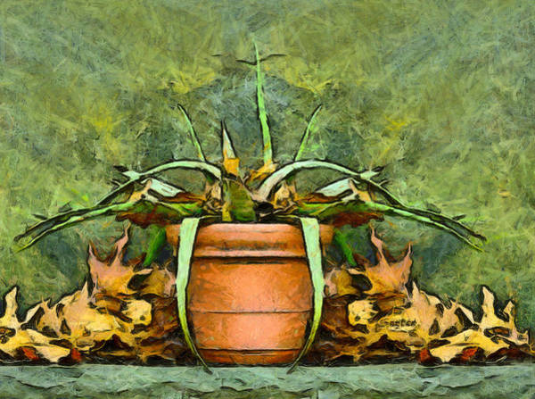 Photograph - Autumn Neglect by Barbara Snyder