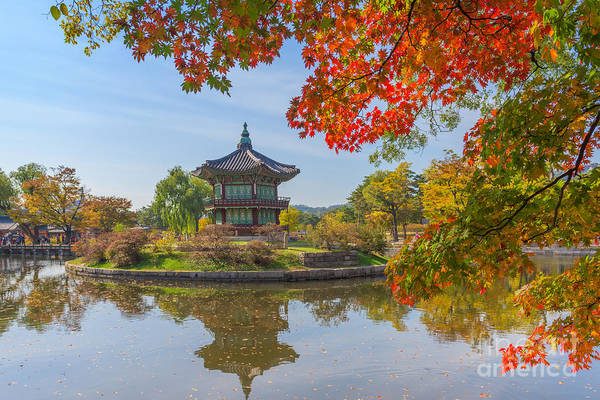 Wall Art - Photograph - Autumn Of Gyeongbokgung Palace In Seoul by Cj Nattanai