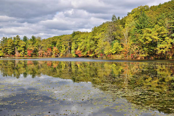 Photograph - Autumn On Greenville Pond by Luke Moore