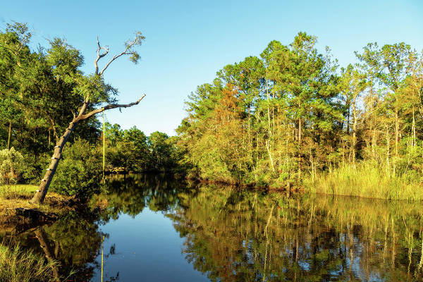 Photograph - Autumn On The Bayou by Kay Brewer