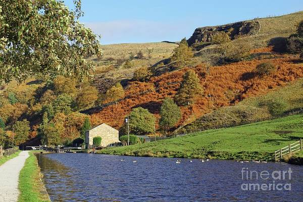 Photograph - Autumn On The Canal-side. by David Birchall