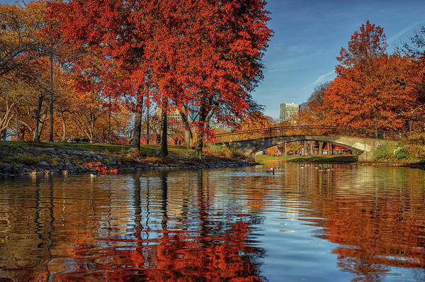 Photograph - Autumn On The Esplanade by Kristen Wilkinson