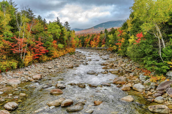 Photograph - Autumn On The Kanc. Nh by Michael Hubley