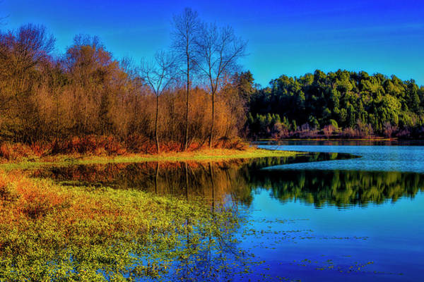 Wall Art - Photograph - Autumn On The Lake by Garry Gay