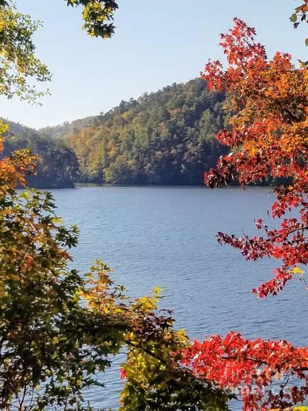 Photograph - Autumn On The Lake by Rachel Hannah