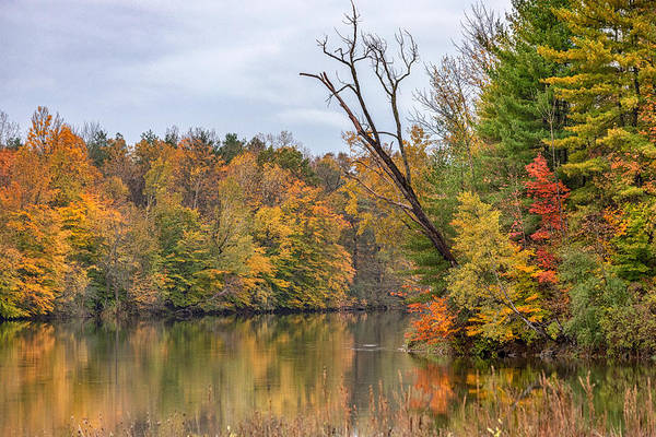Photograph - Autumn On The Oswego River by Rod Best