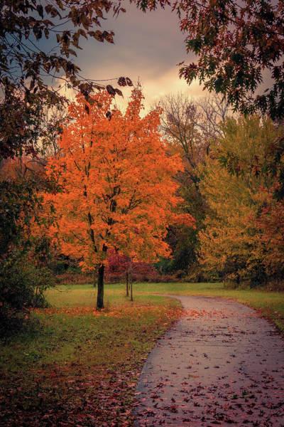 Photograph - Autumn On The Trail by Allin Sorenson