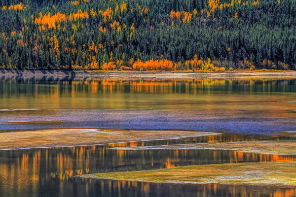 Photograph - Autumn Orange Reflections by Dan Sproul