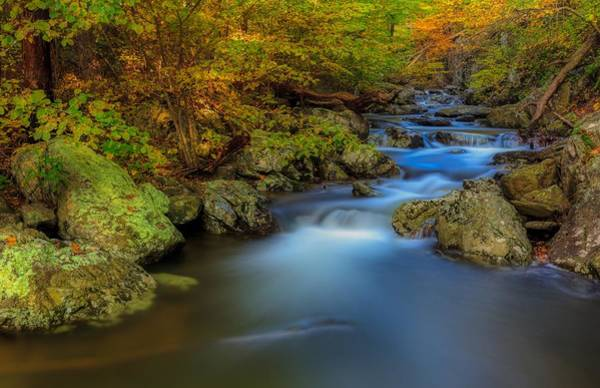 Wall Art - Photograph - Autumn Paradise by N P S Neal Lewis