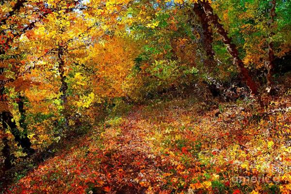 Digital Art - Autumn Path In Van Gogh Style by Christopher Shellhammer