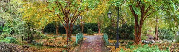 Wall Art - Photograph - Autumn Pathway Pano by Linda Eszenyi