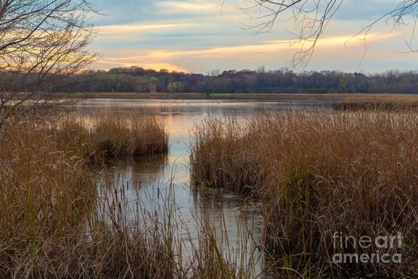 Photograph - Autumn Pond by Susan Rydberg