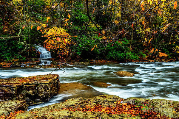 Photograph - Autumn Rain Back Fork Of Elk River by Thomas R Fletcher