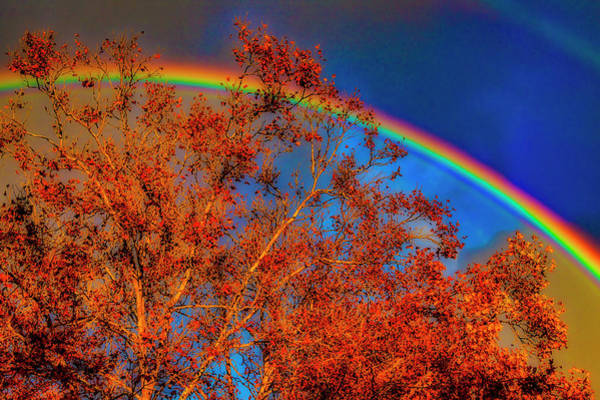 Wall Art - Photograph - Autumn Rainbow by Garry Gay