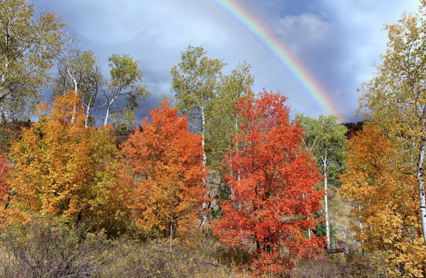 Wall Art - Photograph - Autumn Rainbow by Kathleen Bishop