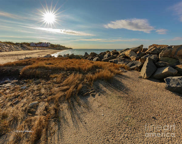 Photograph - Autumn Rays Over Cape Cod by Michelle Constantine