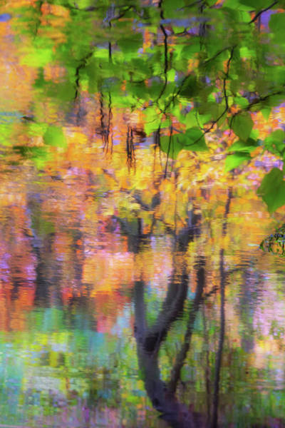 Photograph - Autumn Reflection by Marzena Grabczynska Lorenc