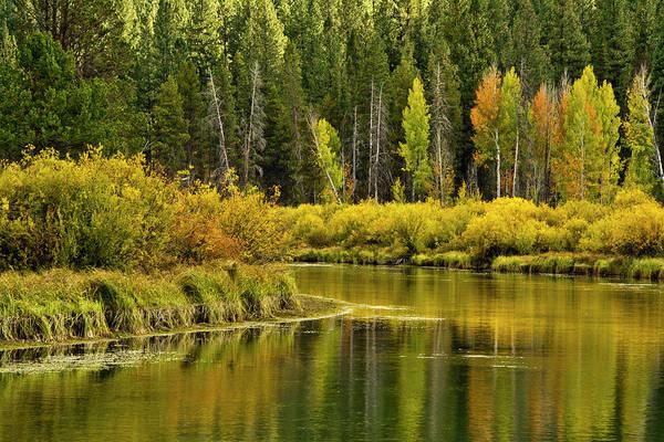 Wall Art - Photograph - Autumn Reflections, Aspen Area by Michel Hersen