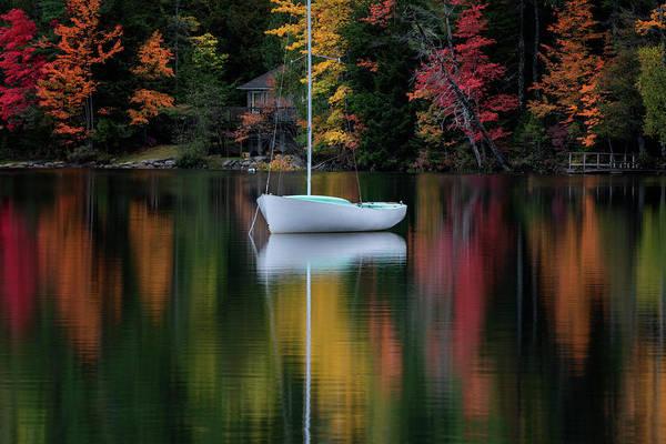 Photograph - Autumn Reflections by Darylann Leonard Photography