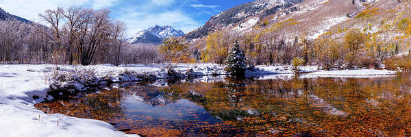 Photograph - Autumn Reflections In Beaver Pond Aspen Colorado by OLena Art Brand
