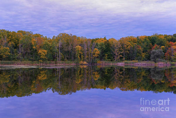 Photograph - Autumn Reflections Of Maybury by Rachel Cohen