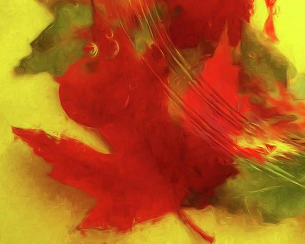 Wall Art - Photograph - Autumn Ripples by Nikolyn McDonald
