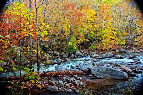 Photograph - Autumn River Memories by Allen Nice-Webb