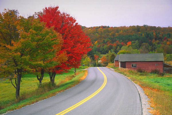 New England Autumn Photograph - Autumn Road by Denistangneyjr