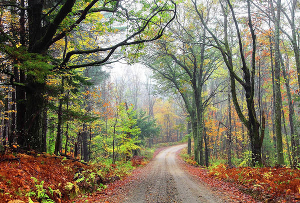 New England Autumn Photograph - Autumn Road In The Asburnham State by Denistangneyjr