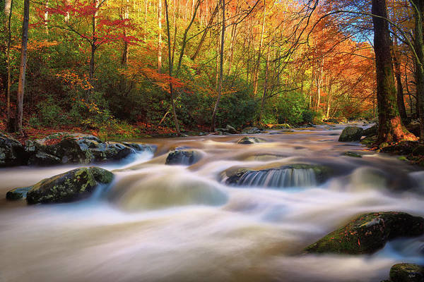 Photograph - Autumn Rush by Greg Norrell