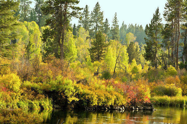 Wall Art - Photograph - Autumn Scene, Deschutes River by Michel Hersen